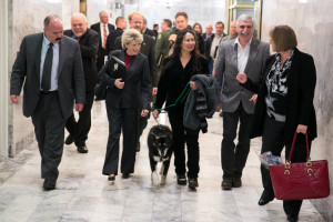 dog at legislature