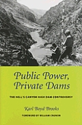 Public Power Private Dams